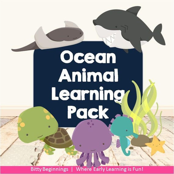 Ocean Animal Learning Pack