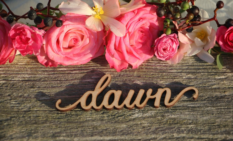 230 Custom Laser Cut Name signPlace Setting SignDinner Party Place Card Wedding Escort Card Modern Calligraphy Party Decoration