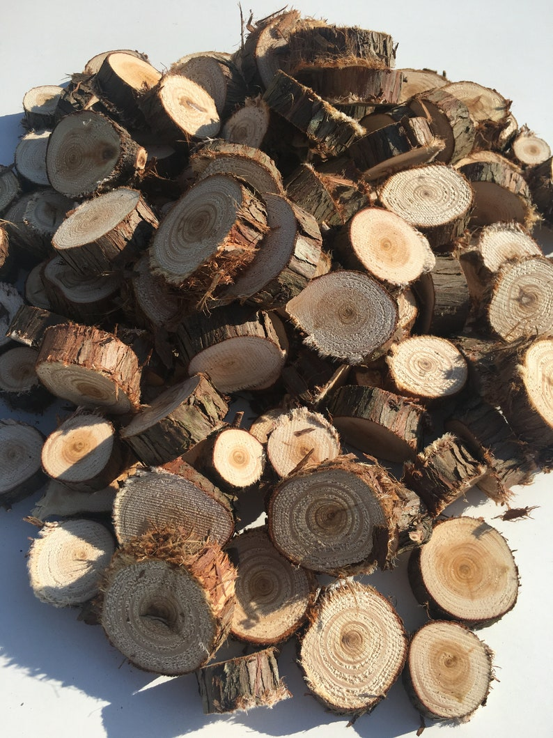 50 Small juniper tree slices  Small wooden slices  Rustic image 0