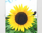 Sunflower, Throw Blanket,Modern Bedroom Decor, Yellow Livingroom Accessories, Bedroom Art,Interior Design,Fleece Blanket, Home Decor,Gift