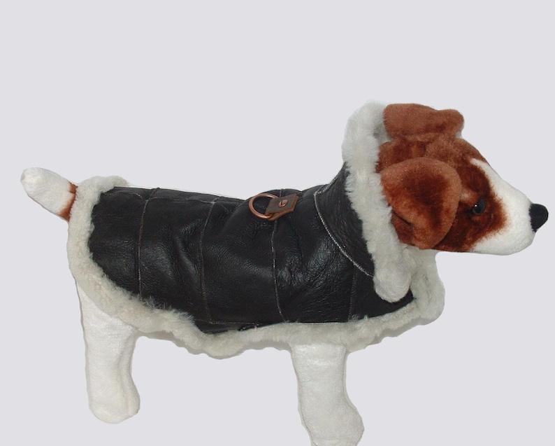 Genuine Sheepskin Dog Coat  Real shearling handmade. Dog image 0