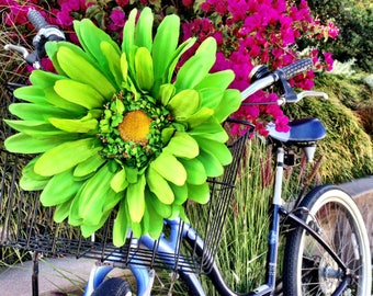 Green Bicycle Basket Daisy Accessory