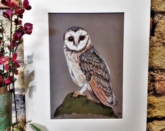 Kennesaw State University Scrappy The Owl Original Charcoal and Pastel Drawing Print