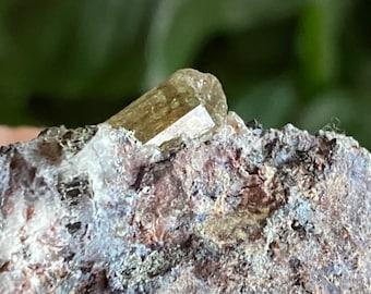 Golden Apatite Crystals with Cerium & Manganese Matrix, Crystals in Matrix, Mexico, 77.00 Grams, CR8180