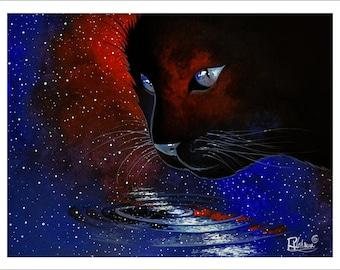 Cat in cosmos