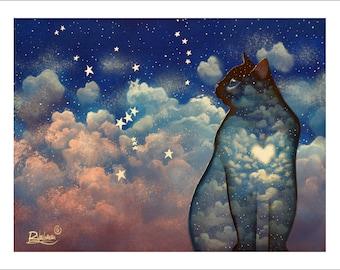 Orion Cat