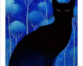 The night sky cat