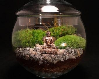 Terrarium Jar Etsy