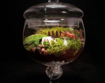 Equestrian Terrarium // Horse Terrarium // Moss Terrarium // Large Terrarium // Horse Lover Gift // Terrarium Gift //  Indoor Plant