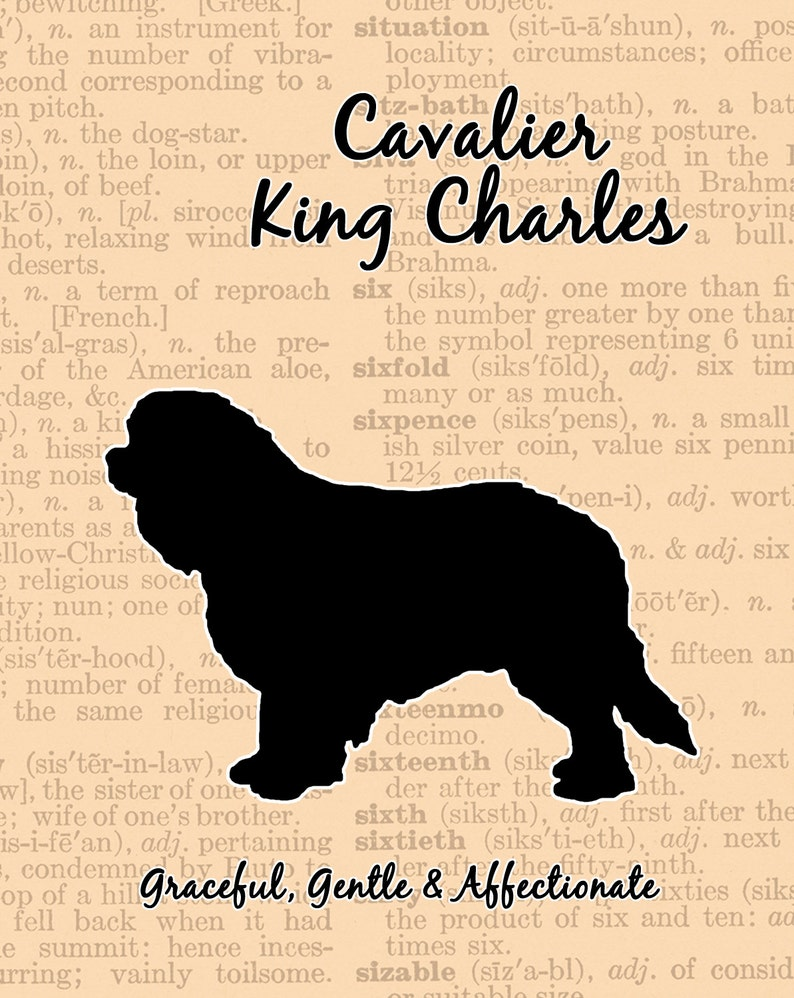 Cavalier King Charles Spaniel Silhouette image 0