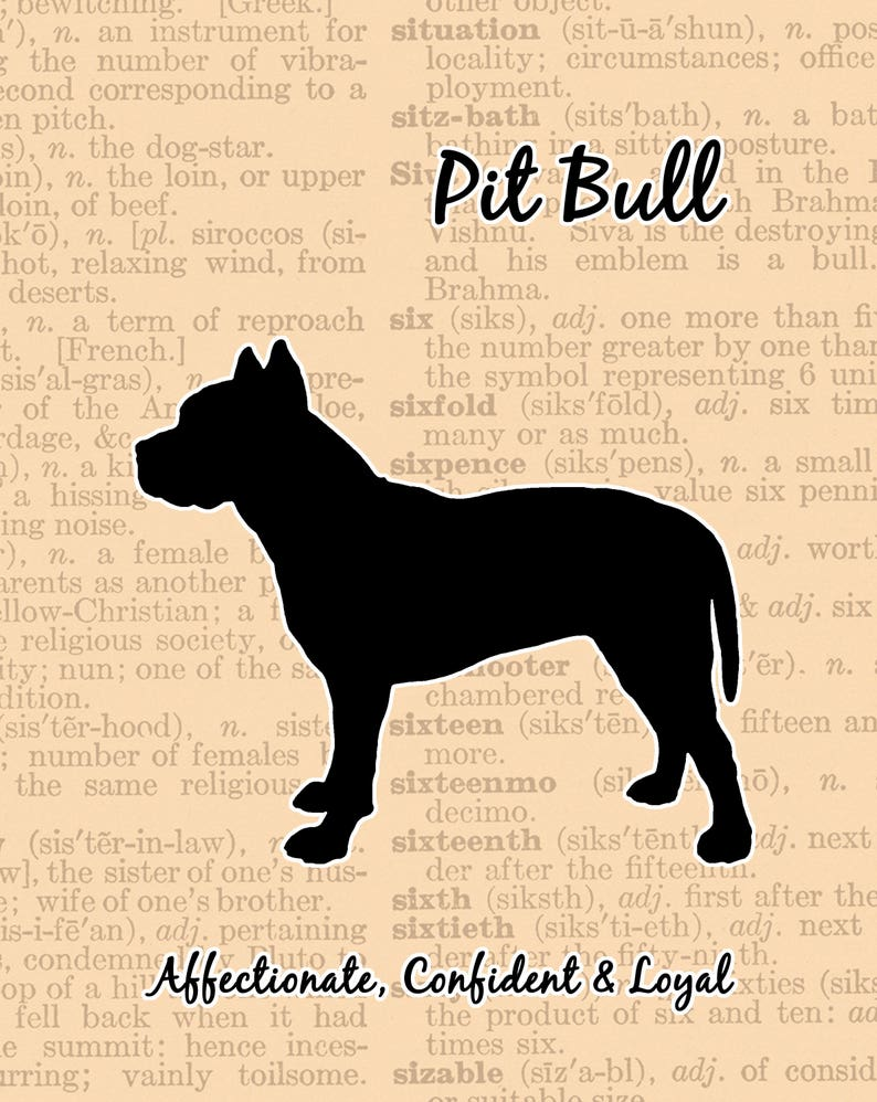 Pit Bull Silhouette Dictionary Page Background image 0