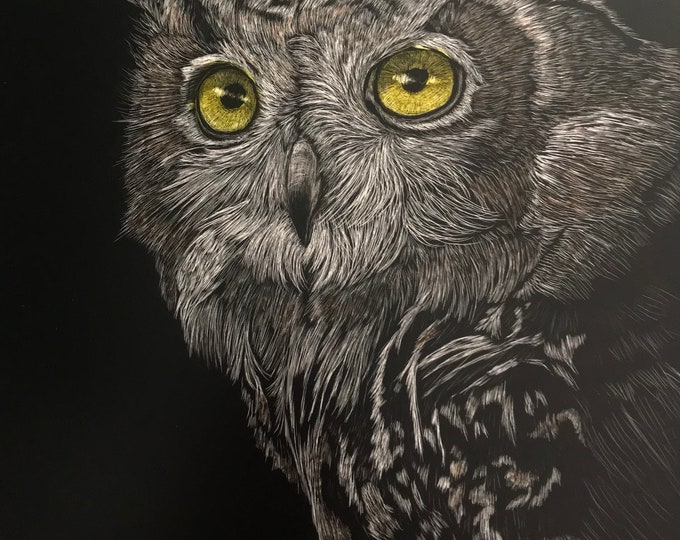 SALE 35 dollars, was 48! Free shipping!! Owls -- Metal print reproductions of my orginal work!!! Scratchboard reproductions!
