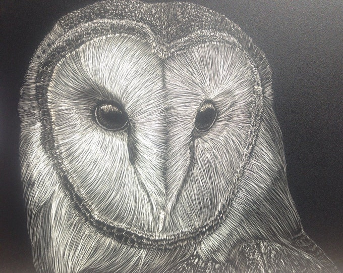 Barn Owl Scratchboard 5x7 inches
