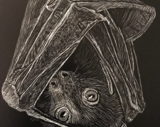 SALE 35 dollars, was 48! Free shipping! Bats, bears and porcupines! Reproductions of my orginal work on metal! Scratchboard reproductions!