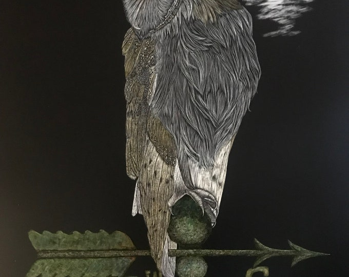 FREE SHIPPING!  True North in Backward World -- 18 x 24 inch scratchboard of barn owl!! One of a kind!