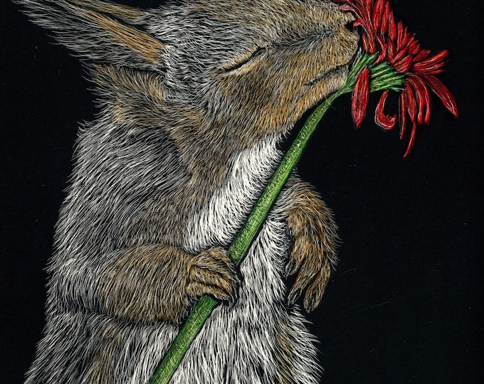 Stop and smell the flowers!  Red squirrel scratchboard - one of a kind!