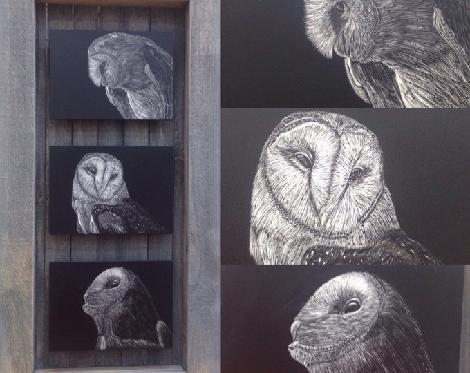 Hoo's who? Barn owl scratchboard panels in a one of a kind handmade rustic frame