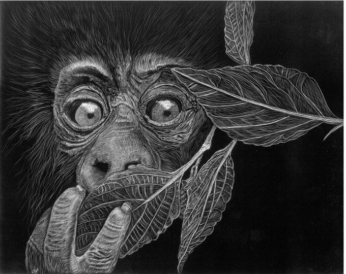 Free shipping! Aluminum substrate reproductions of my orginal work!!! Scratchboard reproductions!  Bears, gorilla, orangatan