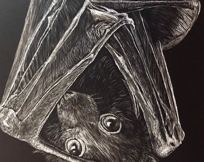 "Flying Fox bat scratchboard -- one of a kind ""Feeling Batty"" FREE SHIPPING!"