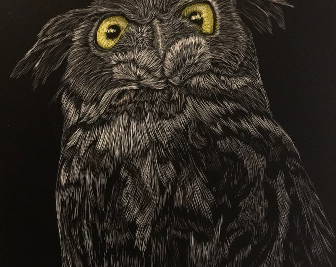 Owls -- Aluminum substrate reproductions of my orginal work!!! Scratchboard reproductions!