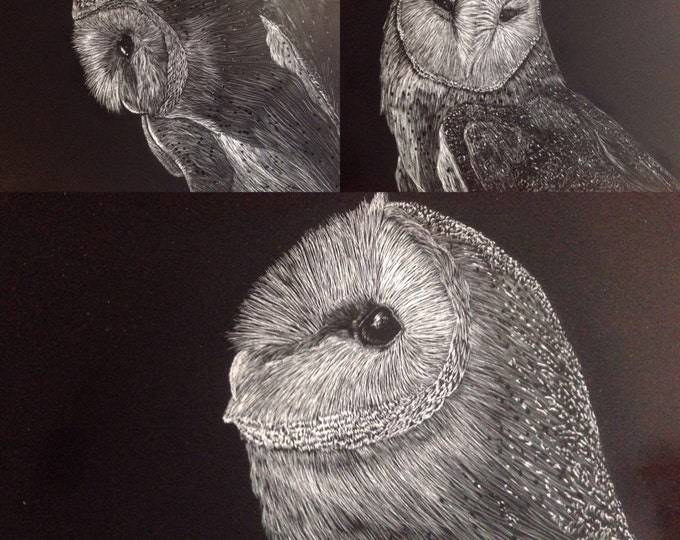 Hoo's who 2 -- Barn owl scratchboards in a one of a kind handmade rustic frame