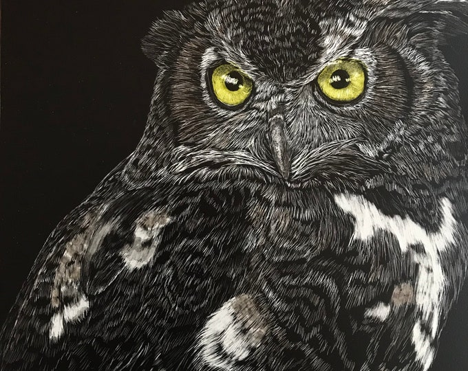 Hoo You Lookin' At? Great horned owl scratchboard!
