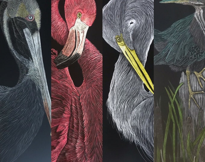 FREE SHIPPING!  Shorebirds -- 9x24 inch scratchboard: flamingo, brown pelican, great egret, great blue heron or roseate spoonbill