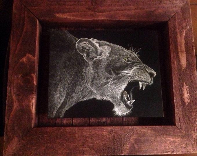 Roar!!! 8x10 inch scratchboard in a handmade rustic frame. One of a kind!