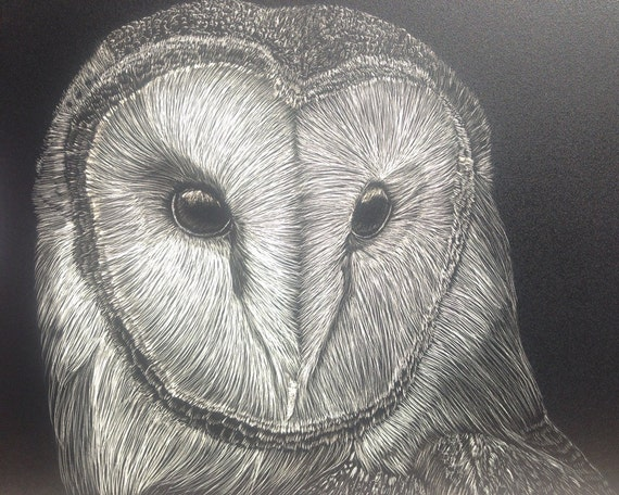 Barn Owl Scratchboard 5x7 inches