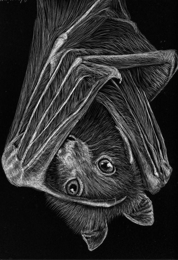 "Flying Fox bat scratchboard -- one of a kind ""Feeling Batty"""
