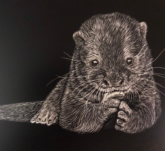 Pick an otter -- any otter!  Free shipping for one of a kind scratchboard!