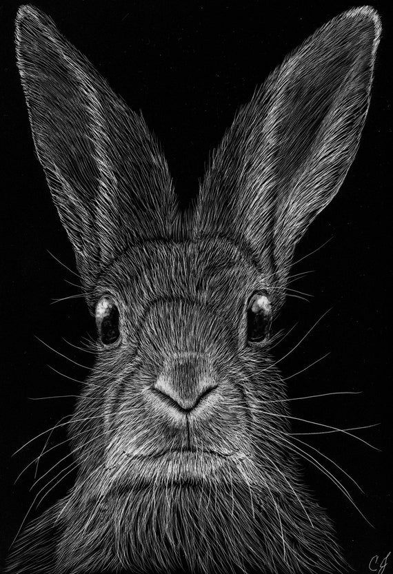 Cute bunny scratchboards! One of a kind! Free shipping!