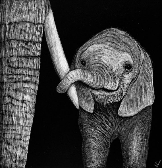 Baby elephant scratchboards - original or print!