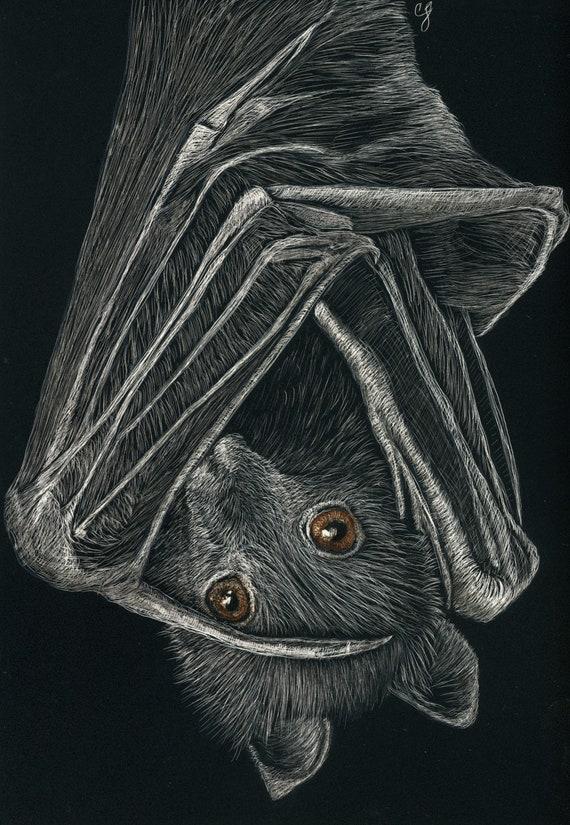 Bats!  Ornaments, prints and originals in the scratchboard medium!  Original works of your favorite friends!