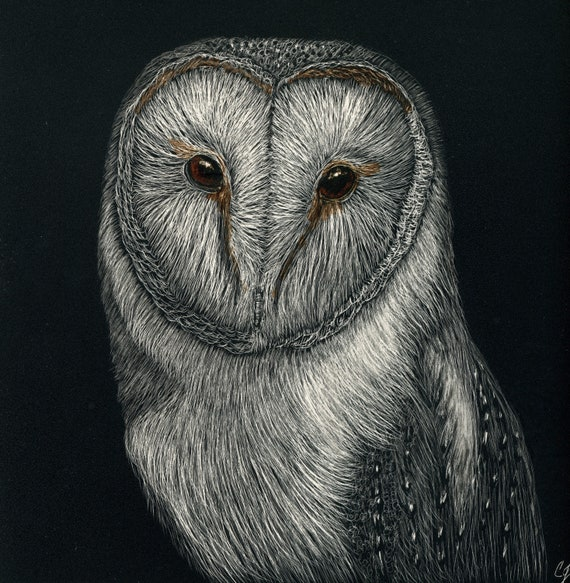 Pick your three!! Hoo's who 2 -- Barn owl scratchboards in a one of a kind handmade rustic frame