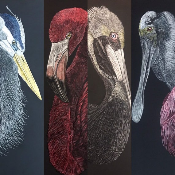 FREE SHIPPING!  Shorebirds -- 9x18 inch scratchboard of your choice: flamingo, brown pelican, great blue heron or roseate spoonbill!