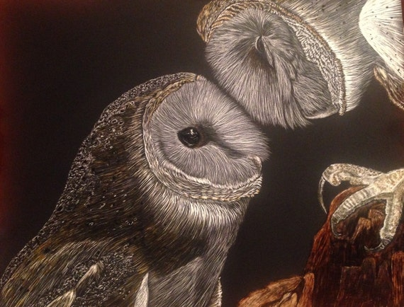 Look Hoo's Home!  Snuggling barn owl scratchboard! Free shipping!
