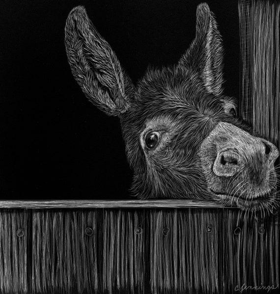 Donkey scratchboard - who doesn't love an ass?