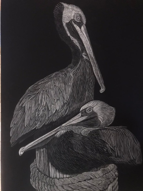 FREE SHIPPING!  Available now! 18 x 24 inch scratchboard of pelicans or snowy owl!! One of a kind!