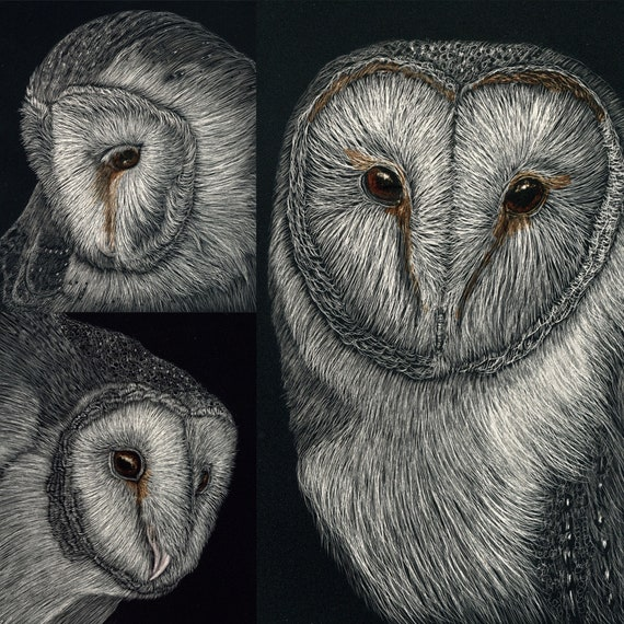 Barn owl scratchboard tryptic in a one of a kind handmade rustic frame