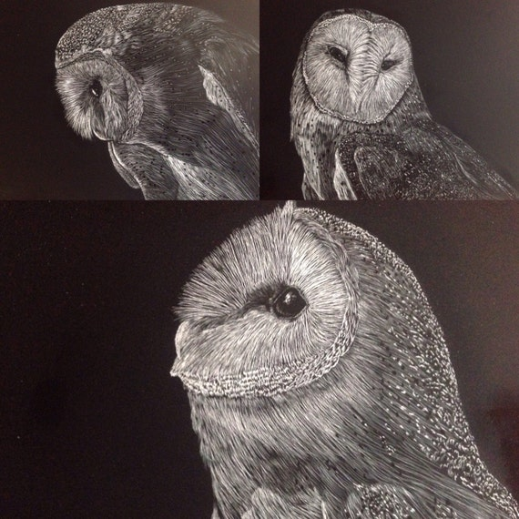 Hoo's who 2 -- Barn owl scratchboards in a one of a kind handmade rustic frame