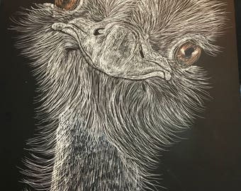 "Ostrich scratchboard -- one of a kind ""Ozzie"""