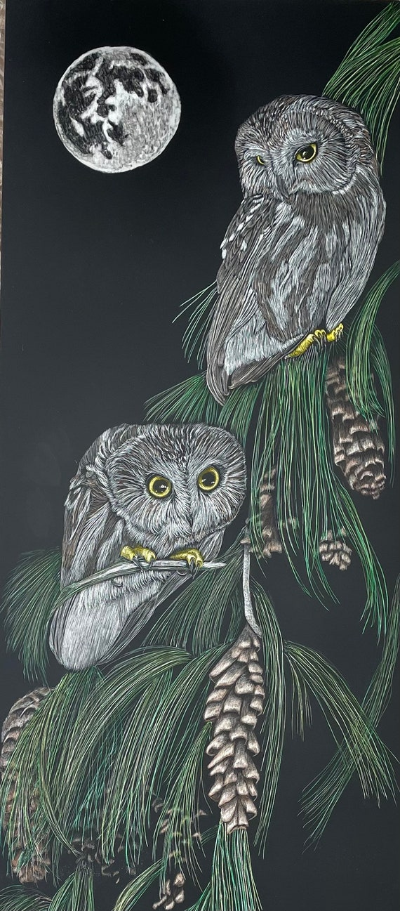 Large owl scratchboard!