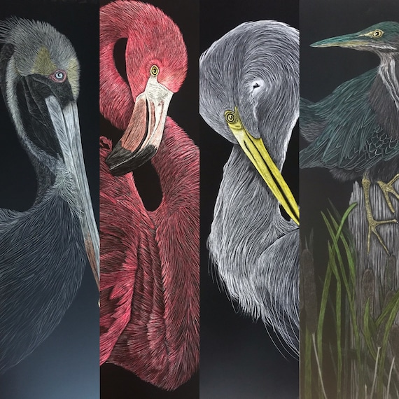FREE SHIPPING!  Shorebirds -- 9x24 inch scratchboard: flamingo, brown pelican, great egret, great blue heron or roseate spoonbill