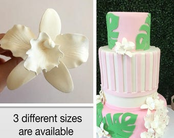 Set of 4 White Sugar Orchids, gum paste Orchids,  beautiful cake topper for your cakes, 3 different sizes are available