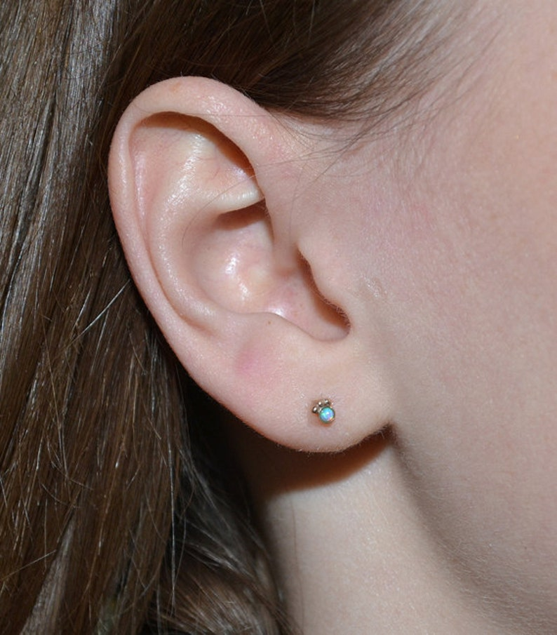 Tragus Stud Gold Tragus Ohrring Knorpel Ohrring Helix   Etsy