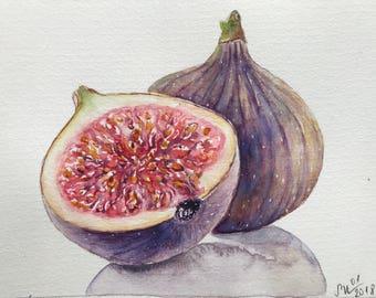 Original watercolor painting of Figs,watercolorart,fruit painting