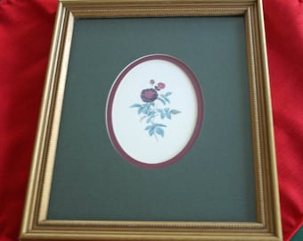 Vintage Framed Rose Art Print Professionally Framed Double Matted  Artwork Picture Home Decor Wall Art