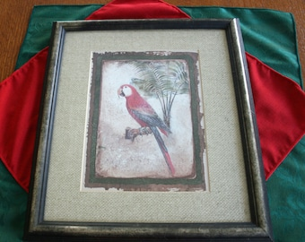 Vintage Framed Red Parrot Art Print Professionally Framed and Matted Picture Artwork Home Decor Wall Art Picture