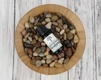 Organic Eucalyptus Essential Oil • Therapeutic Grade • USA • 10 ml Dropper Cap • Sinus Relief •